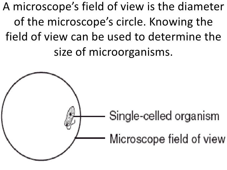 A microscope's field of view is the diameter  of the microscope's circle. Knowing thefield of view can be used to determin...