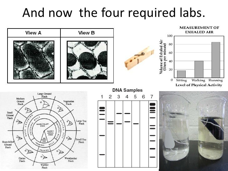 And now the four required labs.