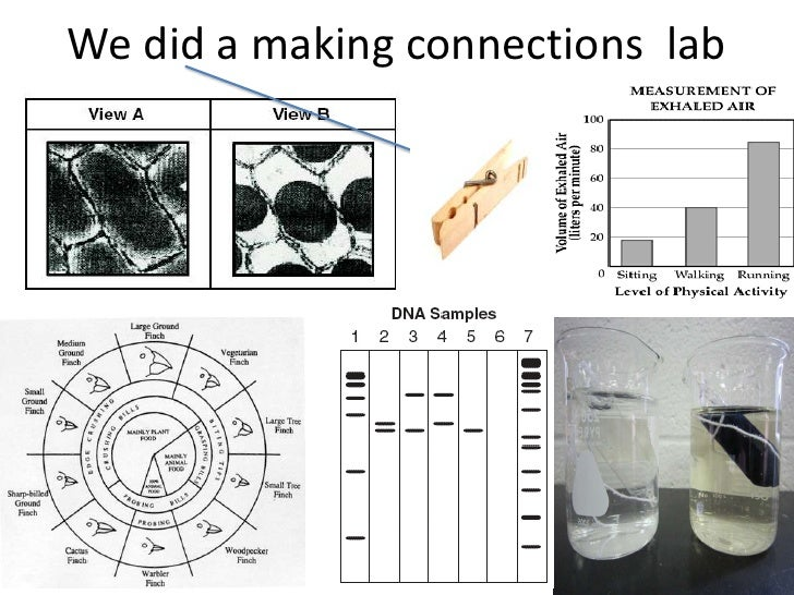 We did a making connections lab