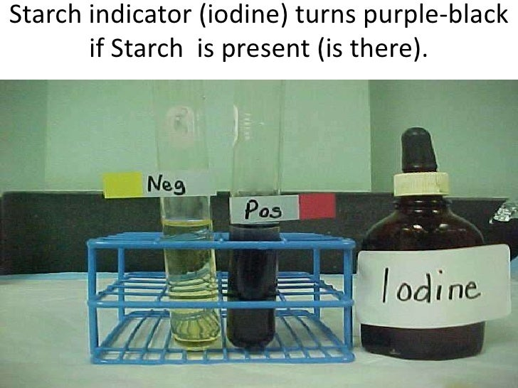 Starch indicator (iodine) turns purple-black       if Starch is present (is there).