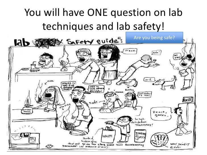 You will have ONE question on lab   techniques and lab safety!                      Are you being safe?