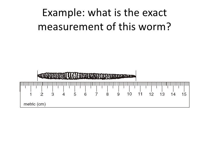 Example: what is the exactmeasurement of this worm?