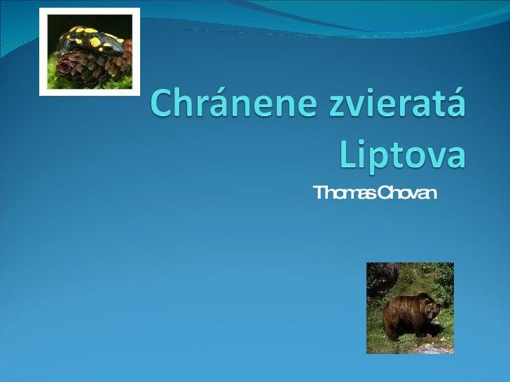 Thomas Chovan