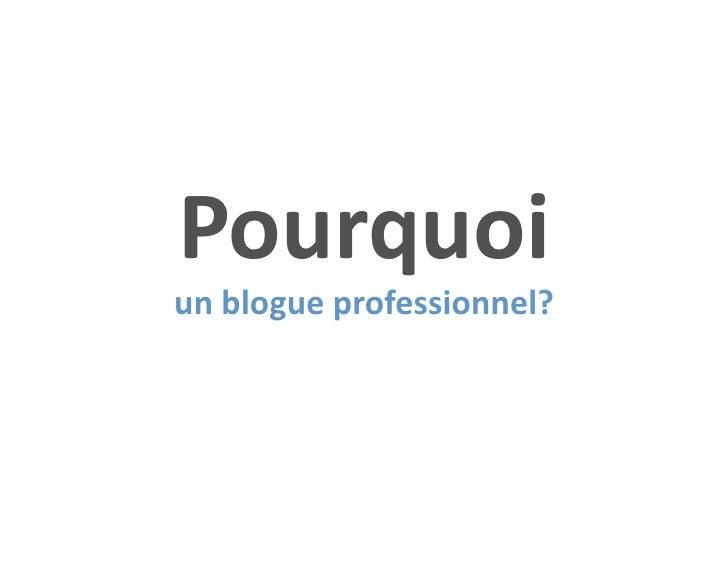 Pourquoiunblogueprofessionnel?