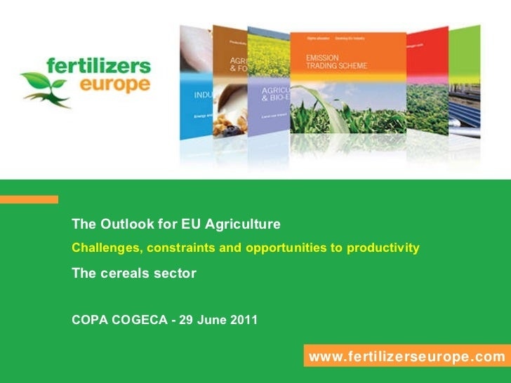 The Outlook for EU Agriculture Challenges, constraints and opportunities to productivity The cereals sector  COPA COGECA -...