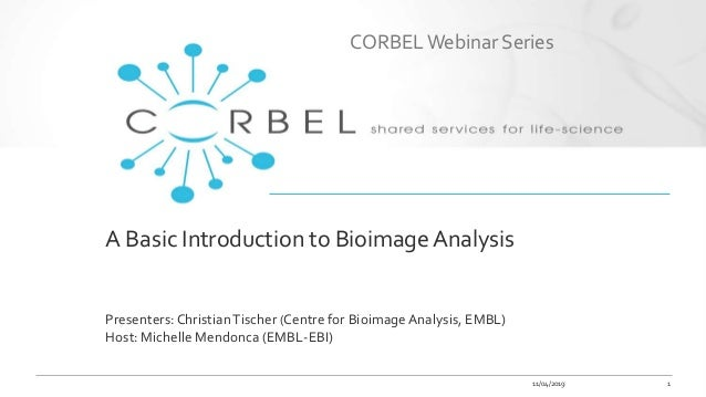 A Basic Introduction to Bioimage Analysis Presenters: ChristianTischer (Centre for Bioimage Analysis, EMBL) Host: Michelle...