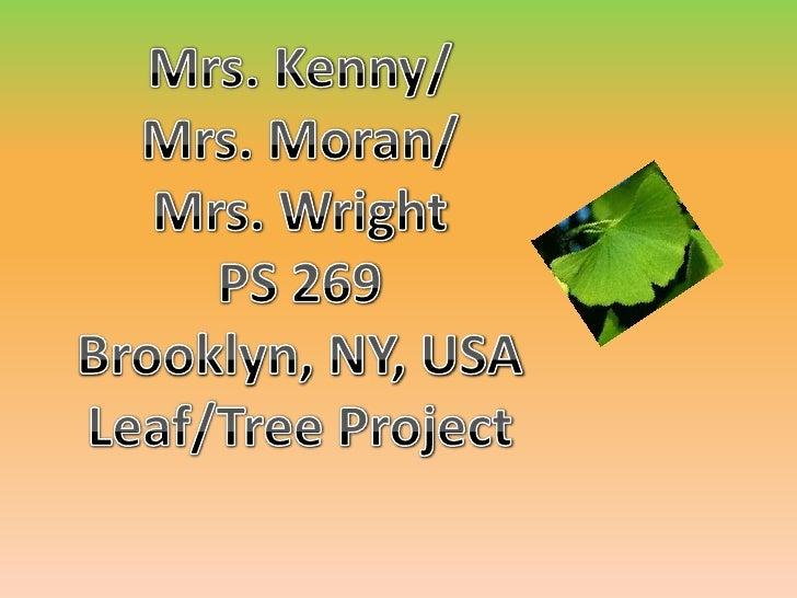Mrs. Kenny/<br />Mrs. Moran/<br />Mrs. Wright<br />PS 269<br />Brooklyn, NY, USA<br />Leaf/Tree Project<br />