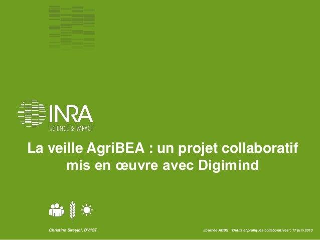 """Christine Sireyjol, DV/IST Journée ADBS """"Outils et pratiques collaboratives"""": 17 juin 2013La veille AgriBEA : un projet co..."""