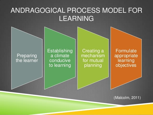 6 assumptions of the andragogical model Andragogy's detectives: a critique of the present and of the concept was grounded in several assumptions' than any other concept/theory/model.