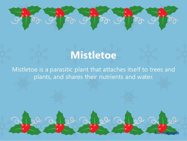 Facts About Christmas.Fascinating Facts About Christmas Symbols You Didn T Know