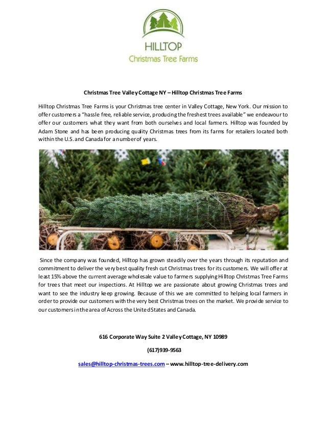 christmas tree valley cottage ny hilltop christmas tree farms hilltop christmas tree farms is your - Hilltop Christmas