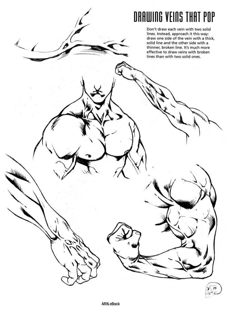 Drawing Cutting Edge Anatomy Ebook Download cetarade - oukas.info