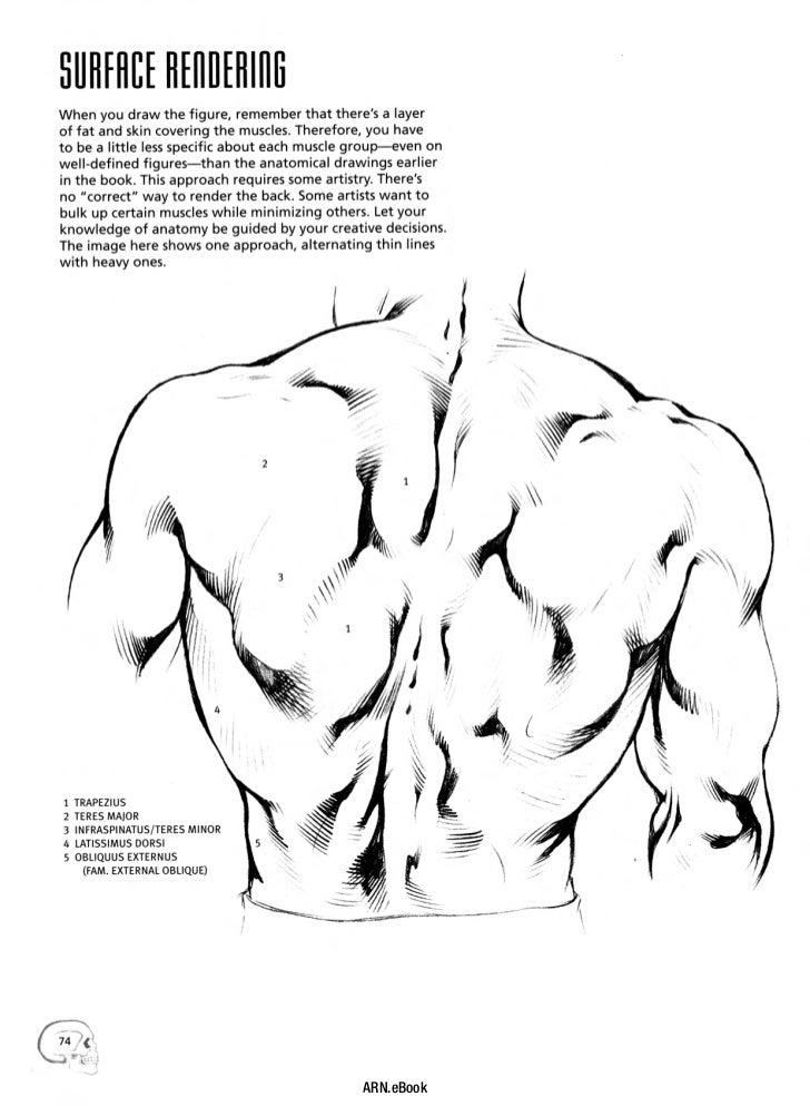 ARN.eBook