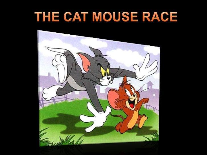 THE CAT MOUSE RACE<br />