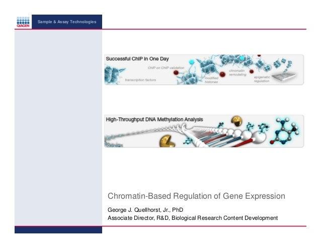 Sample & Assay Technologies  Chromatin-Based Regulation of Gene Expression George J. Quellhorst, Jr., PhD Associate Direct...