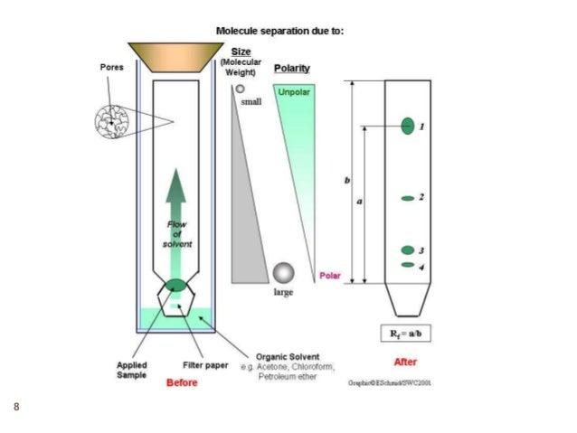 Chromatography (paper chromatography and tlc)