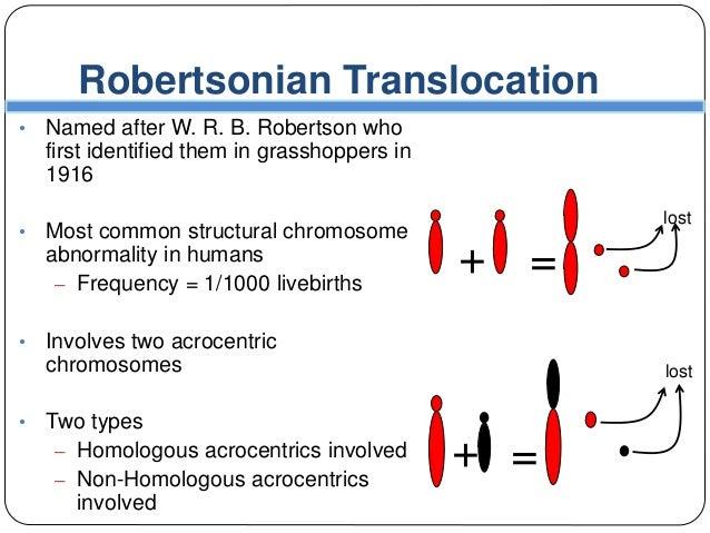 Chromosomal Aberration