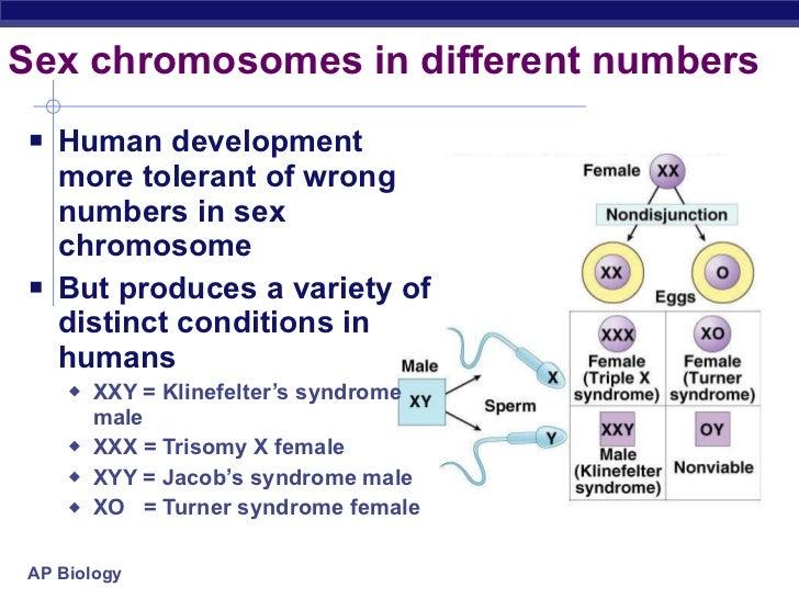 Sex chromosomal