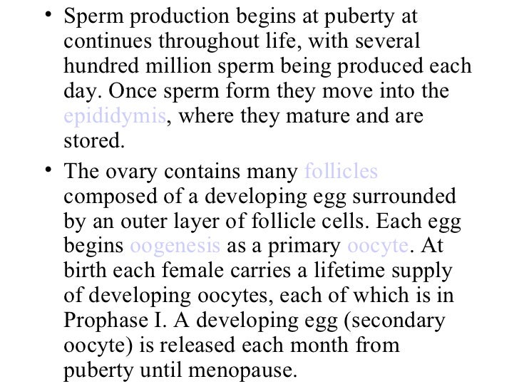Oocyte Development During the Reproductive Cycle