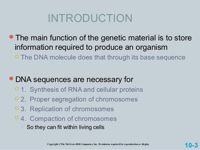 Chromosome Slide 2