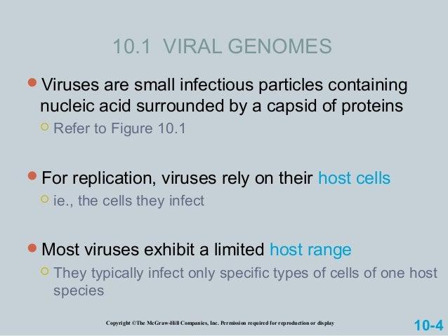 Chromosome Slide 3
