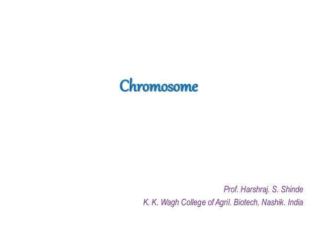 Chromosome Prof. Harshraj. S. Shinde K. K. Wagh College of Agril. Biotech, Nashik. India