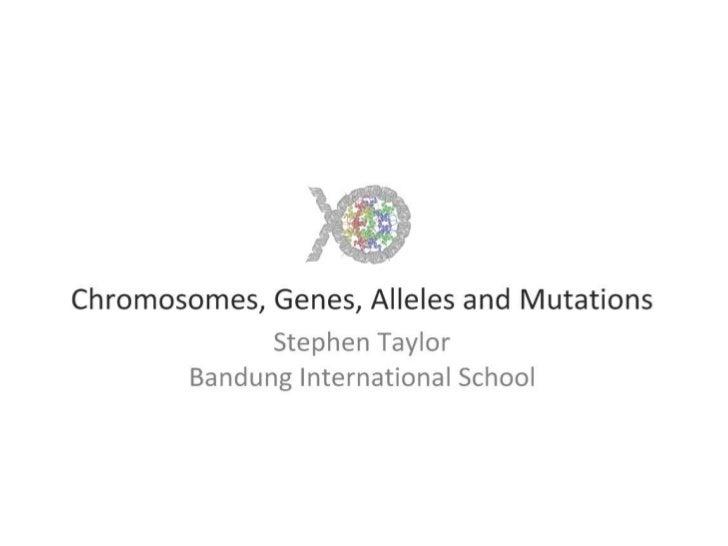Chromosomes, Genes, Alleles and Mutations