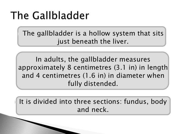 Chronic cholecystitis Slide 2