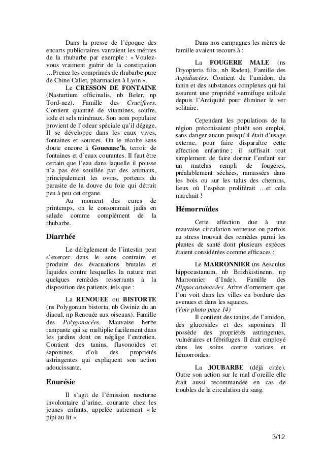 Chroniques de Fouesnant -   s-myuh Slide 3