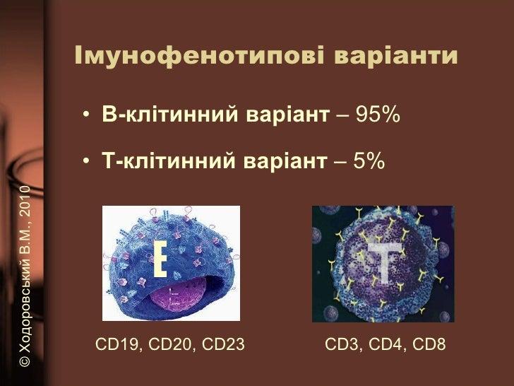 Імунофенотипові варіанти <ul><li>B -клітинний варіант  – 95% </li></ul><ul><li>Т -клітинний варіант  – 5% </li></ul>В CD19...