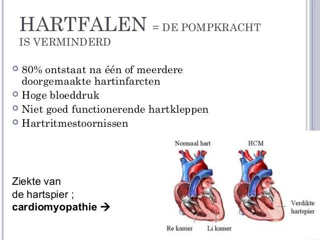 cholesterolverlagende medicatie