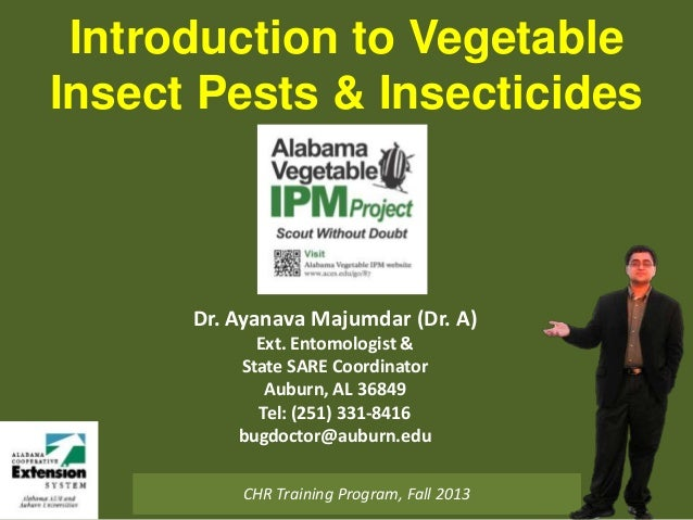 Introduction to Vegetable Insect Pests & Insecticides  Dr. Ayanava Majumdar (Dr. A) Ext. Entomologist & State SARE Coordin...