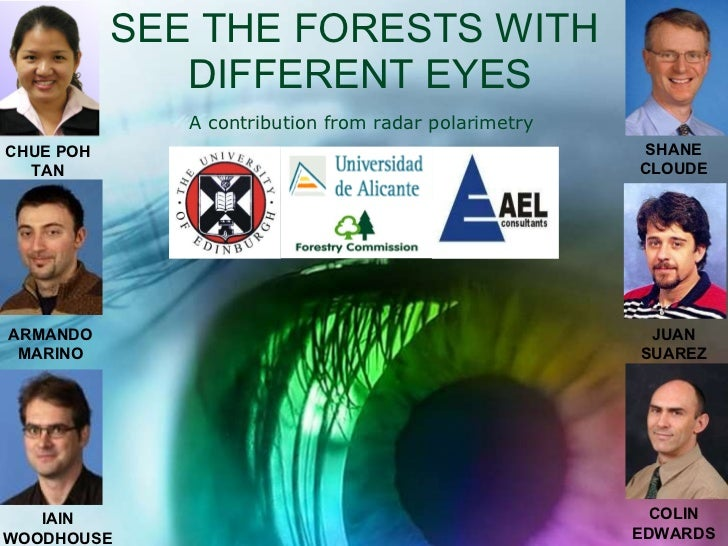 SEE THE FORESTS WITH  DIFFERENT EYES CHUE POH TAN ARMANDO MARINO IAIN WOODHOUSE SHANE CLOUDE JUAN SUAREZ COLIN EDWARDS A c...