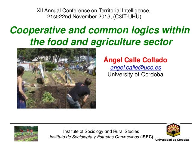 XII Annual Conference on Territorial Intelligence, 21st-22nd November 2013, (C3IT-UHU)  Cooperative and common logics with...