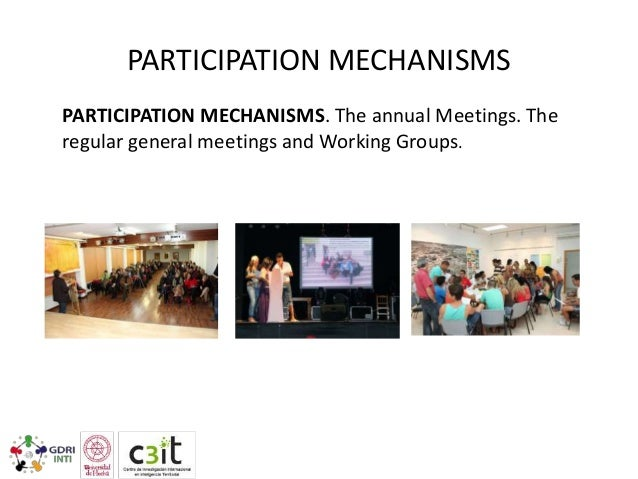 PARTICIPATION MECHANISMS PARTICIPATION MECHANISMS. The annual Meetings. The regular general meetings and Working Groups.