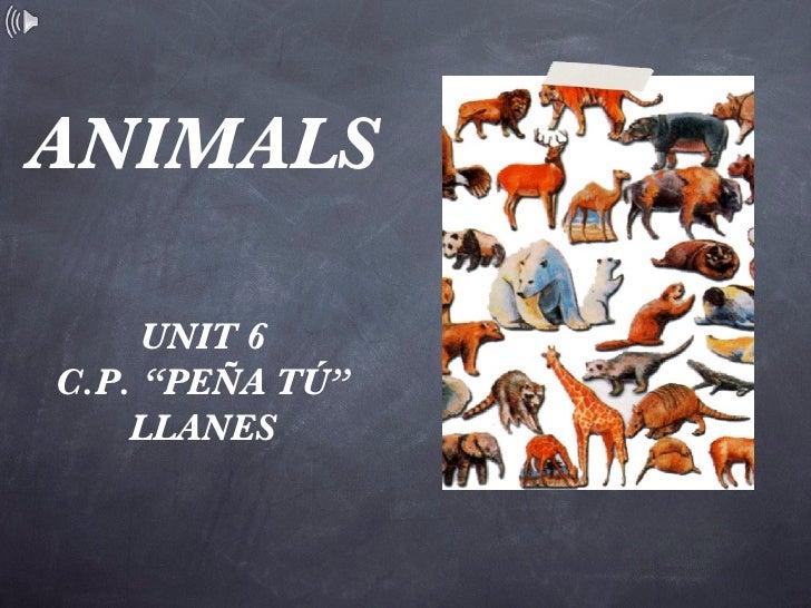 """ANIMALS <ul><li>UNIT 6 </li></ul><ul><li>C.P. """"PEÑA TÚ"""" </li></ul><ul><li>LLANES </li></ul>"""