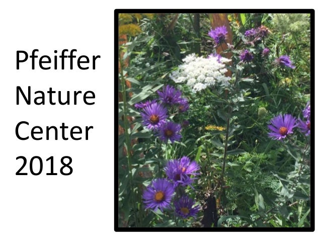 Pfeiffer Nature Center 2018