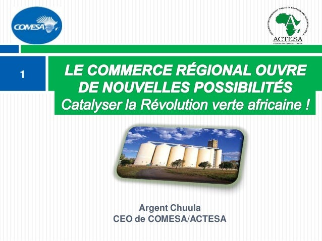 Argent Chuula CEO de COMESA/ACTESA 1