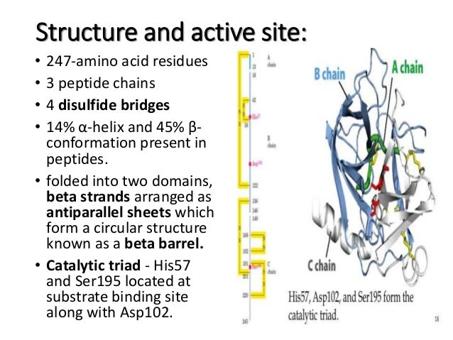 on identification of an active site peptide mapping