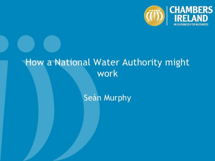 How a National Water Authority might work Seán Murphy