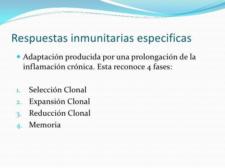 Respuestas inmunitarias especificas  Adaptación producida por una prolongación de la      inflamación crónica. Esta recon...