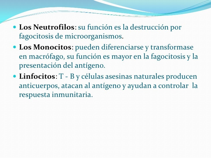  Los Neutrofilos: su función es la destrucción por   fagocitosis de microorganismos.  Los Monocitos: pueden diferenciars...