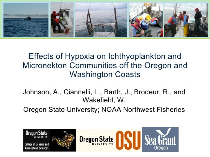 Effects of Hypoxia on Ichthyoplankton and Micronekton Communities off the Oregon and Washington Coasts Johnson, A., Cianne...