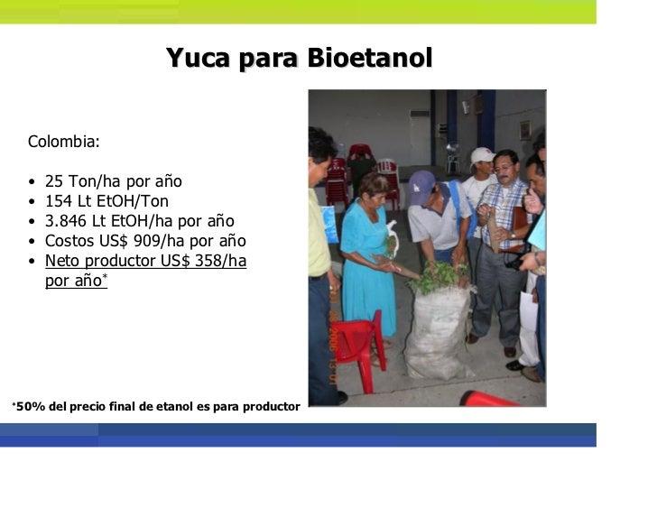 Como asosciaones de productores pueden producir bioetanol - Precio de bioetanol ...