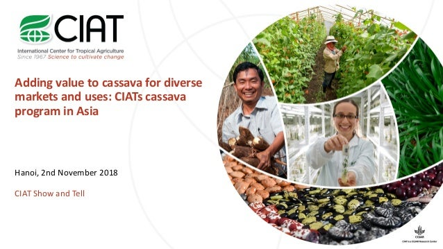Adding value to cassava for diverse markets and uses: CIATs cassava program in Asia Hanoi, 2nd November 2018 CIAT Show and...