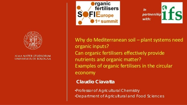 Why do Mediterranean soil-plant systems need organic inputs? Can orga…