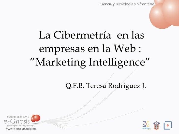 CibermetríA  Empresas Web