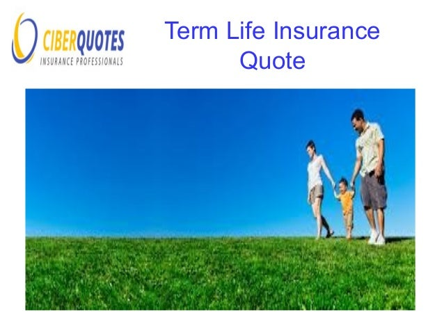 Best Life Insurance Quotes Online Mesmerizing Best Online Life Insurance  Quotes Ciberquotes