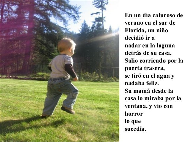 En un día caluroso de verano en el sur de Florida, un niño decidió ir a nadar en la laguna detrás de su casa. Salio corrie...