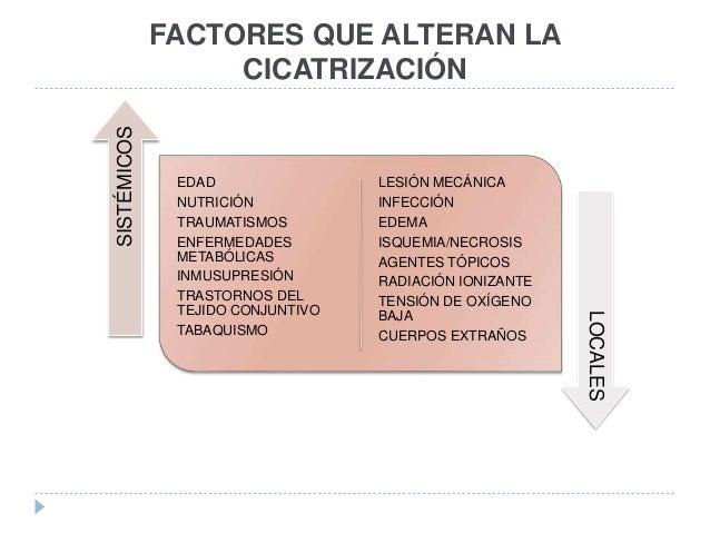 FACTORES QUE ALTERAN LA CICATRIZACIÓN EDAD NUTRICIÓN TRAUMATISMOS ENFERMEDADES METABÓLICAS INMUSUPRESIÓN TRASTORNOS DEL TE...